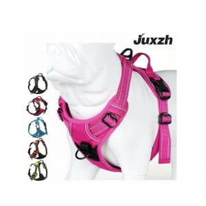 Juxzh Truelove Soft Dog Harness with Handle & 2 Leash Attachments